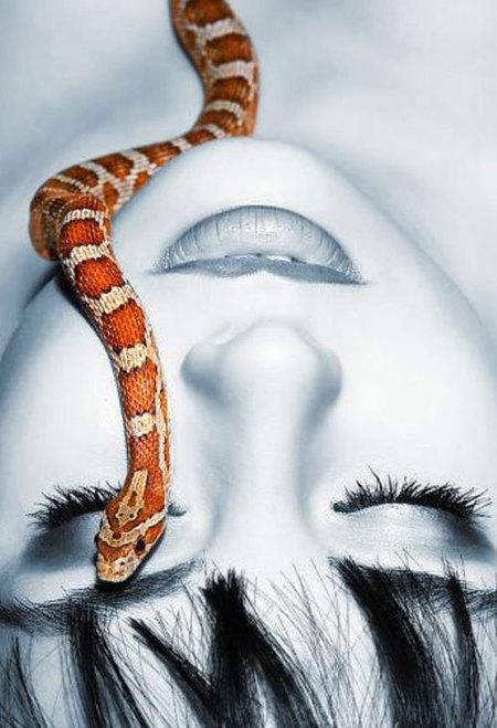 čūska - dzīvnieks vai Sātans