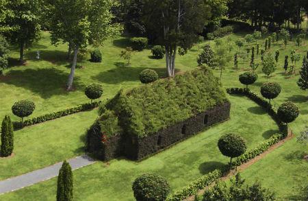 Jaunzēlandietis izaudzē koku baznīcu