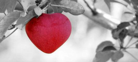 Kā iegūt mīlestību