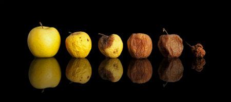kādiem jābūt kristīgas dzīves darbiem un augļiem