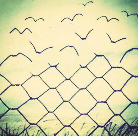 kristīga brīvības izpratne