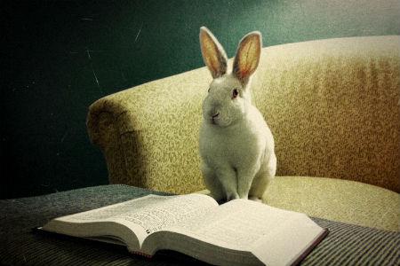 par Bībeli