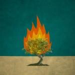 Un Tā Kunga eņģelis viņam parādījās uguns liesmā no ērkšķu krūma, un viņš skatījās, un redzi, ērkšķu krūms dega ugunīs, bet nesadega.