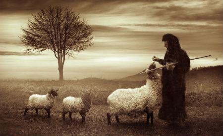 bīskapiem nav varas dot nekādas pavēles