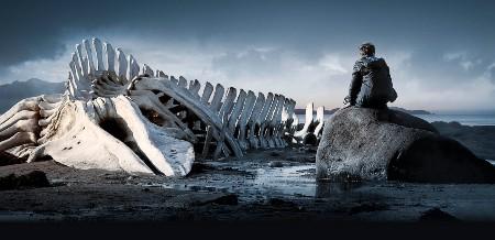 """Filma """"Leviatāns"""""""