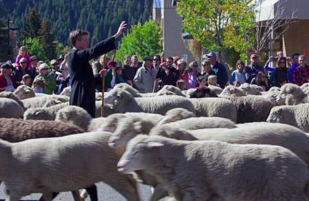 Jaunās Derības modelis - gans un ganāmais pulks