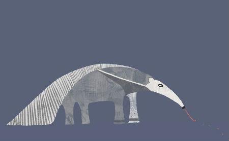 Ko māca skudrlācis