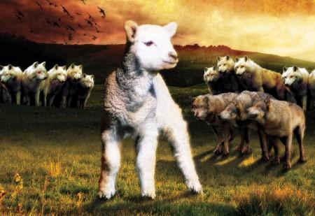 Mēs stāvam kā nošķirtas avis vilku starpā