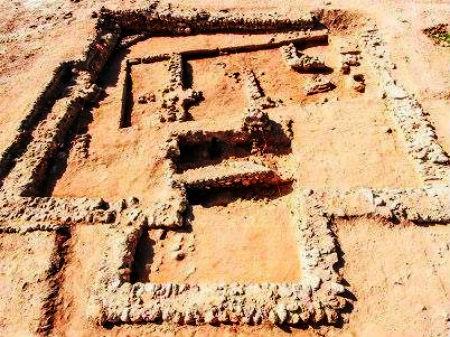 Sodomas drupas